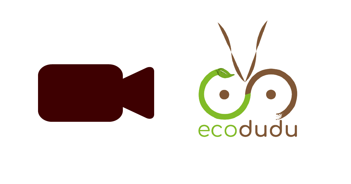 Ecodudu featured on NTV Weekend Edition
